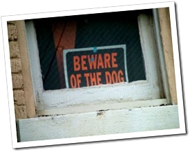 419746_beware_of_dog