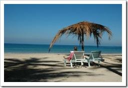 978884_tropical_beach_3