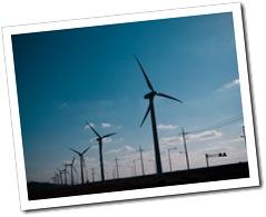 1240690_windmills_2