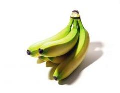 677832_unripe_bananas