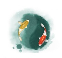 1190220_taichi_fish