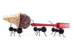 Ants Carrying Ice Cream Cone, Concept