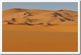 1412589_desert
