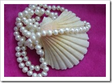 230069_shell_and_pearls_4