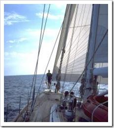 321810_sailtrip_3