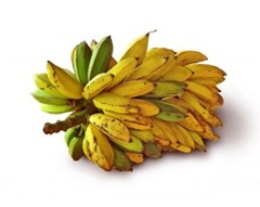 909736_going_bananas_in_brazil