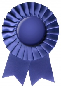 Why I Don't Like Employee of the Month Awards. | Practical ...
