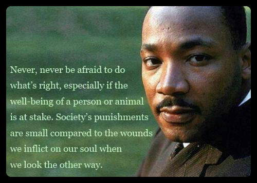 martin-luther-king-jr-quotes-courage-sayings_Fotor