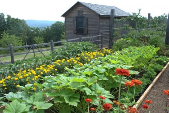 allen-summer-garden-web