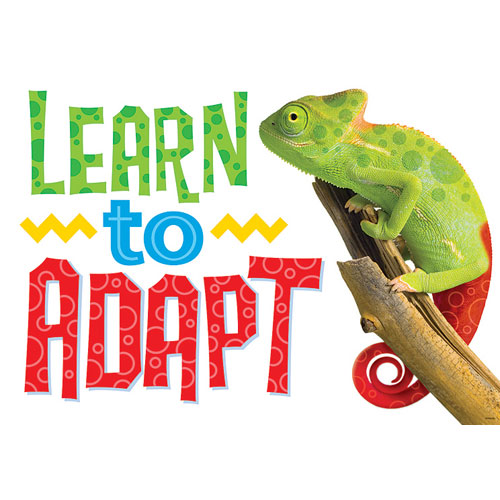 learn-to-adapt